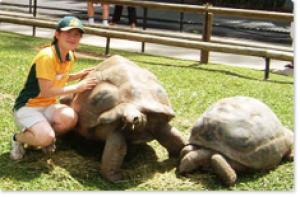 一番の留学目的を達成!将来の仕事に向けて動物園でボランティア