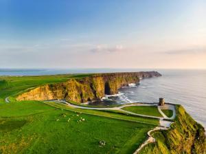 【今人気のアイルランド】刺激的な留学体験をご紹介!