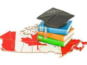 大学生必見!休学留学検討中の方にオススメ有給インターンプログラム3選!