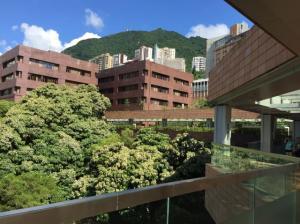 海外インターン型研修プログラム 香港大学の魅力