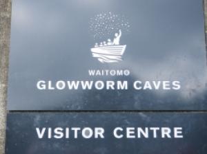 飛行石のように光る自然のイルミネーション!幻想的なワイトモの洞窟
