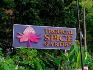 熱帯の自然や植物に圧倒されるペナン島のトロピカルスパイスガーデン