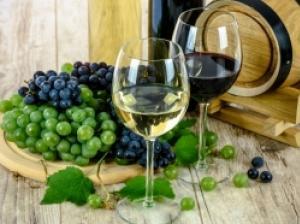 シチリアワインをご紹介!