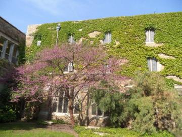 ELSランゲージセンター シカゴ校(ドミニカン大学)