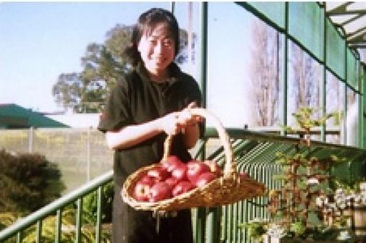 採れたてのりんごをレストランへ。時には肉体労働も